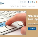 Blue Maven Law